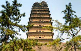 Shaolin Temple, Comberton – Shaolin Monks